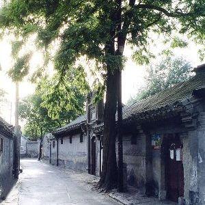 SBJ - Hutong - Maggic - small