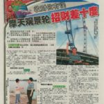 Newspaper Media (17)