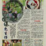Newspaper Media (41)