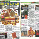 Newspaper Media (64)