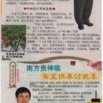 Newspaper Media (90)